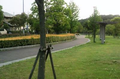 20130605_taniguchikouen-7.jpg