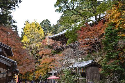 20161222_sisijyuuroku_2.JPG