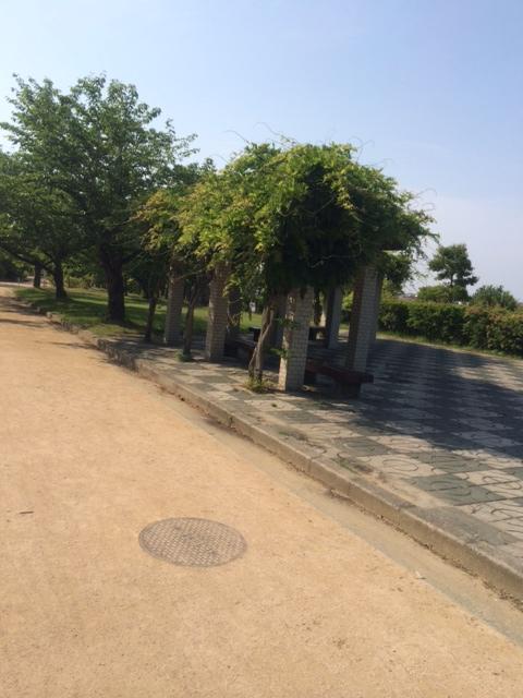 akashi-kaihin4.jpg