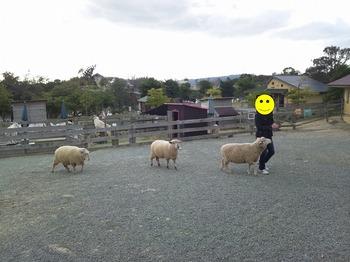 20130401_jiamei2.jpg