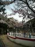 お花見もできて海が近い大きな公園