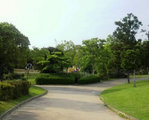 大きな木々に囲まれてゆったりお散歩!