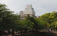 動物園から見た姫路城No1
