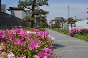 ステーション5月号を見て、知らなかった加古川に行ってきました。