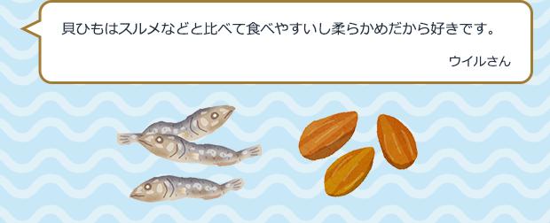 貝ひもはスルメなどと比べて食べやすいし柔らかめだから好きです。 ウイルさん