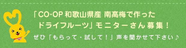 「CO・OP和歌山県産 南高梅で作ったドライフルーツ」モニターさん募集!